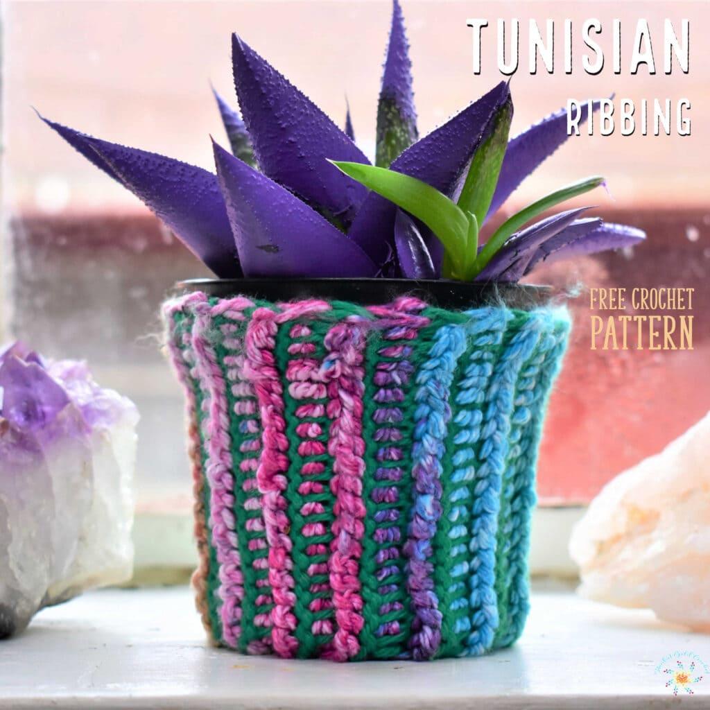 crochet rainbow coozie