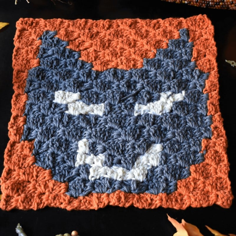 Black Cat C2C Square Free Pattern 2